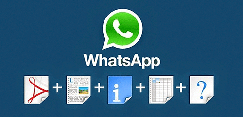 Document to Whatsapp